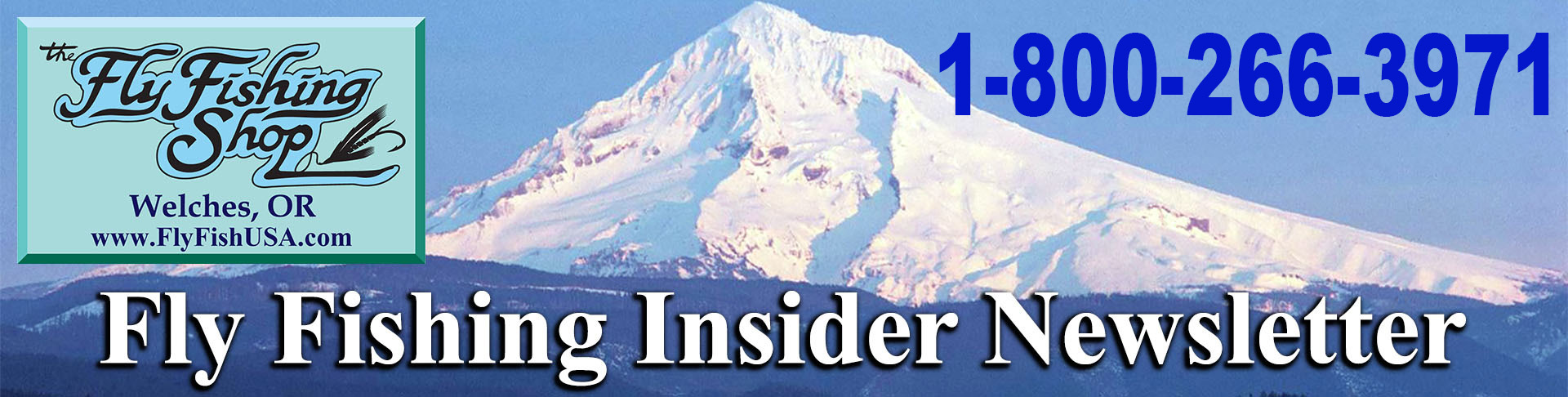 Fly Fishing Insider Newsletter masthead