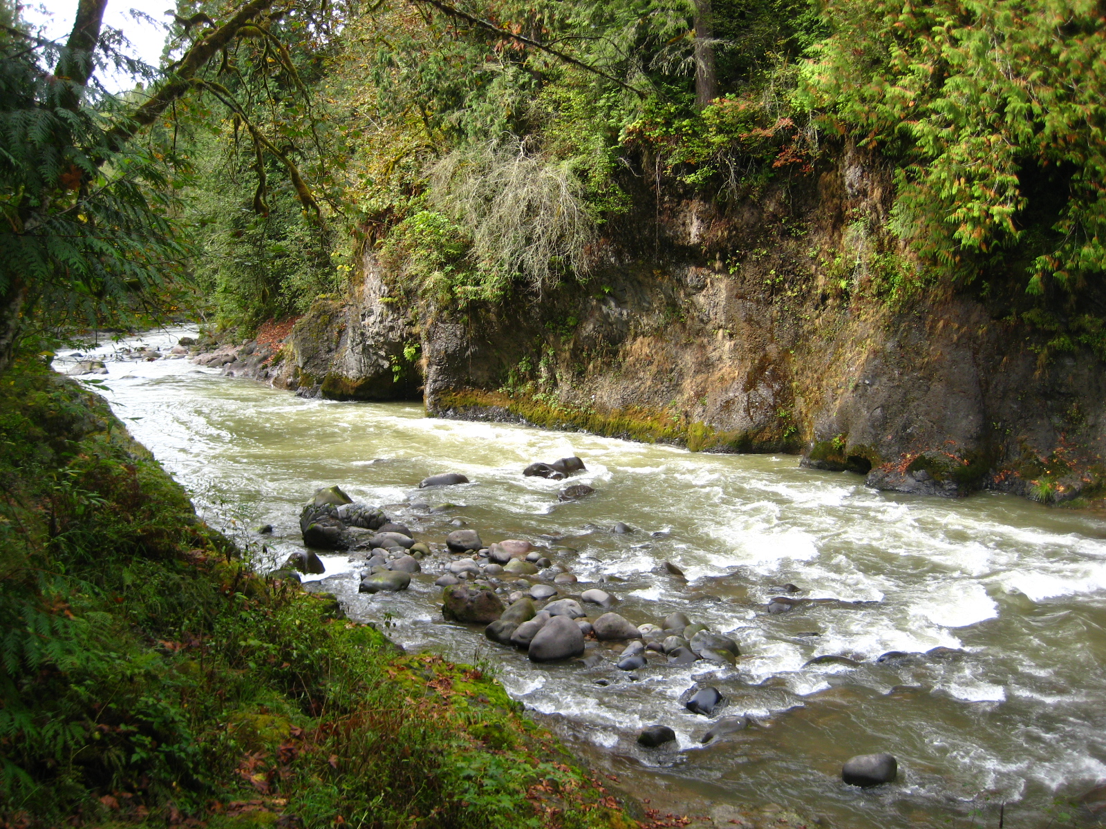 Weekend warrior newsletter featuring fishing reports for Sandy river fishing report