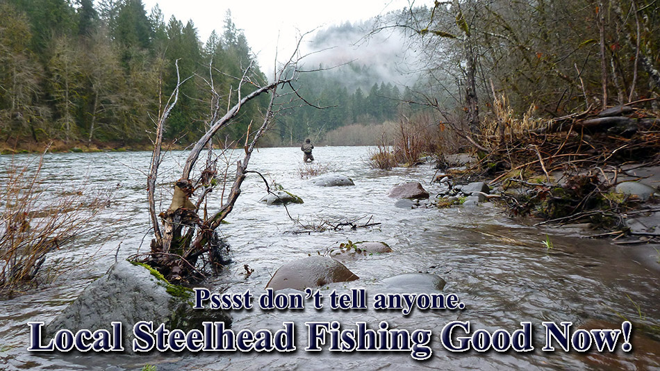 The most popular fly fishing books newest fly fishing web for Is fishing good today